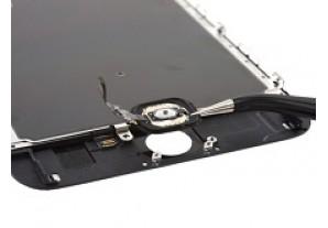 Замена кнопки Home для iPhone 6S Plus
